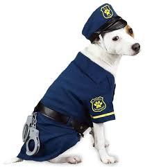 Small Puppy Halloween Costumes 781 Fantasia Pet Images Fantasy Animals
