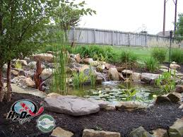 Backyard Pond Landscaping Ideas Koi Pond Backyard Pond U0026 Small Pond Ideas For Your Kentucky