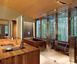 design modern tropical bathroom decor with luxury shower room and