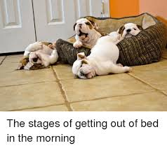 Get Out Of Bed Meme - the stages of getting out of bed in the morning funny meme on sizzle