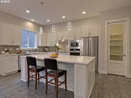kitchen sleek kitchen designs with beautiful simplicity