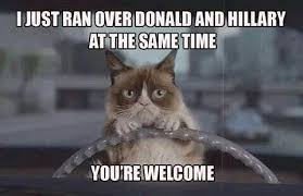 Ugly Cat Meme - 27 grumpy cat funny memes quotes and humor