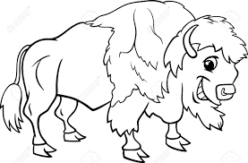 buffalo and bison clipart cliparts and others art inspiration