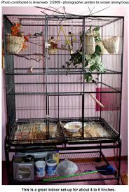 heat l for bird aviary housing birds beauty of birds