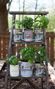 recycled herb planters and an upcycled wooden ladder garden