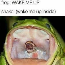 Up Memes - wake me up inside meme xyz