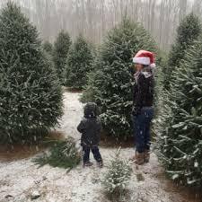 anne ellen christmas tree farm 10 photos u0026 10 reviews