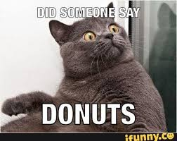 Donut Memes - nice donut meme doughnut meme related keywords suggestions