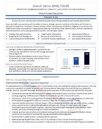 sample professional resume 15 health nardellidesign com