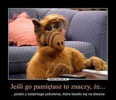 Alf Meme - alf quotes entrancing inspirational famous quotes about working hard