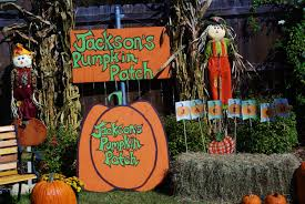 1st Halloween Birthday Party Ideas by Choosing Joy Today Jackson U0027s 1st Birthday Pumpkin Patch