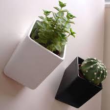 Unique Plant Pots 22 Best Desktop Planters Images On Pinterest Planters Flower