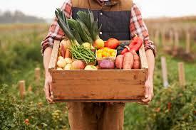 signs you u0027re not eating enough vegetables reader u0027s digest
