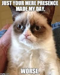 Mere Cat Meme - worse imgflip