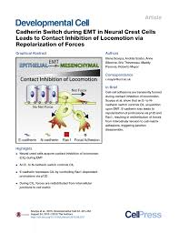 Sho Nr Kur cadherin switch during emt in neural pdf available