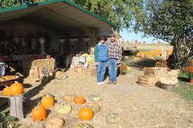 papa john u0027s pumpkin farm offers a variety of fall decorations