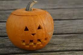 free images orange halloween jack o lantern decorative