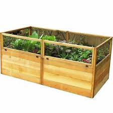 Wood For Raised Vegetable Garden by Outdoor Homes 6x3 Feet Cedar Wood Raised Vegetable Garden Table