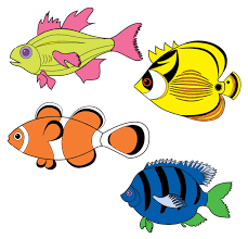 colored fish drawing