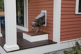 How To Plumb A House by How To Install A Pet Door A Concord Carpenter