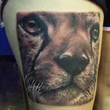 watercolor cat tattoo cat ankle tattoo on tattoochief com