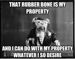 Southern Memes - southern gentleman dog memes quickmeme