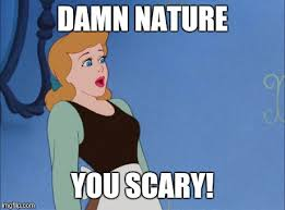 Damn Nature You Scary Meme - oh lawdy imgflip