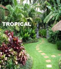 tremendous how to design a tropical garden tropical landscaping