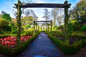 the walled garden picture of sewerby hall and gardens