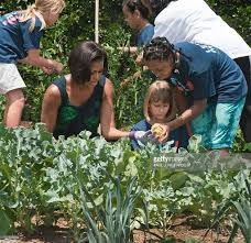 michelle obama hosts chefs harvests from white house garden
