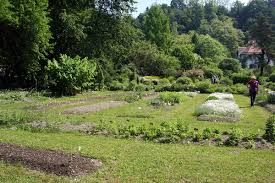 botanical sts ljubljana botanical garden