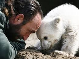 Knut con Thomas Dörflein, morto all'età di 44 anni
