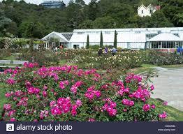 New Zealand Botanical Gardens Dh Botanic Gardens Wellington New Zealand Norwood Memorial