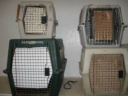crate training world bird sanctuary the rookie files crate training 101