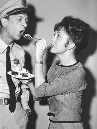22 best the andy griffith show images on bees cook