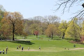 prospect park your guide to the park