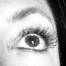 How Expensive Are Eyelash Extensions The Lash Extension