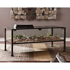 Glass Display Coffee Table Southern Enterprises Terrarium Glass Display Cocktail Table Black
