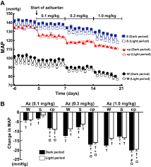 Blood Pressure Map Novel Mechanism For Disrupted Circadian Blood Pressure Rhythm In A