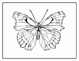 free butterfly printables 469697