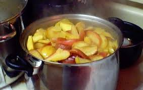 applesauce how to make applesauce easily home canning with