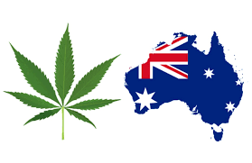 Weed Flag 5 Facts About The Australia Weed Scene U2013 Society Kush U2013 Medium