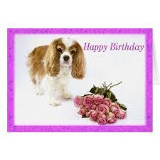 happy birthday cavalier king charles spaniel card zazzle