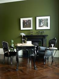 interior design awesome olive green interior paint home interior