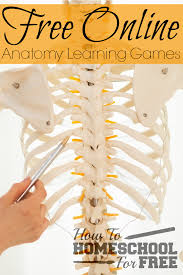 Apologia Human Anatomy And Physiology Add These Free Online Anatomy Learning Games To Your Homeschool