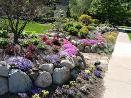 Best Rock Gardens Garden Rock Wall 35 Best Rock Garden Images On Pinterest Gardening