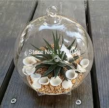 aliexpress com buy 2pcs set 10cm succulent terrarium kit hanging