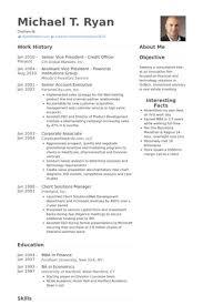 resume on customer service best 25 cv examples ideas on pinterest professional cv examples