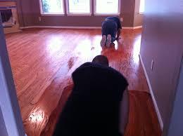 hardwood creations wood floor refinishing contractors