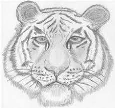 coloriage klaw tigre coloriage pinterest coloriage
